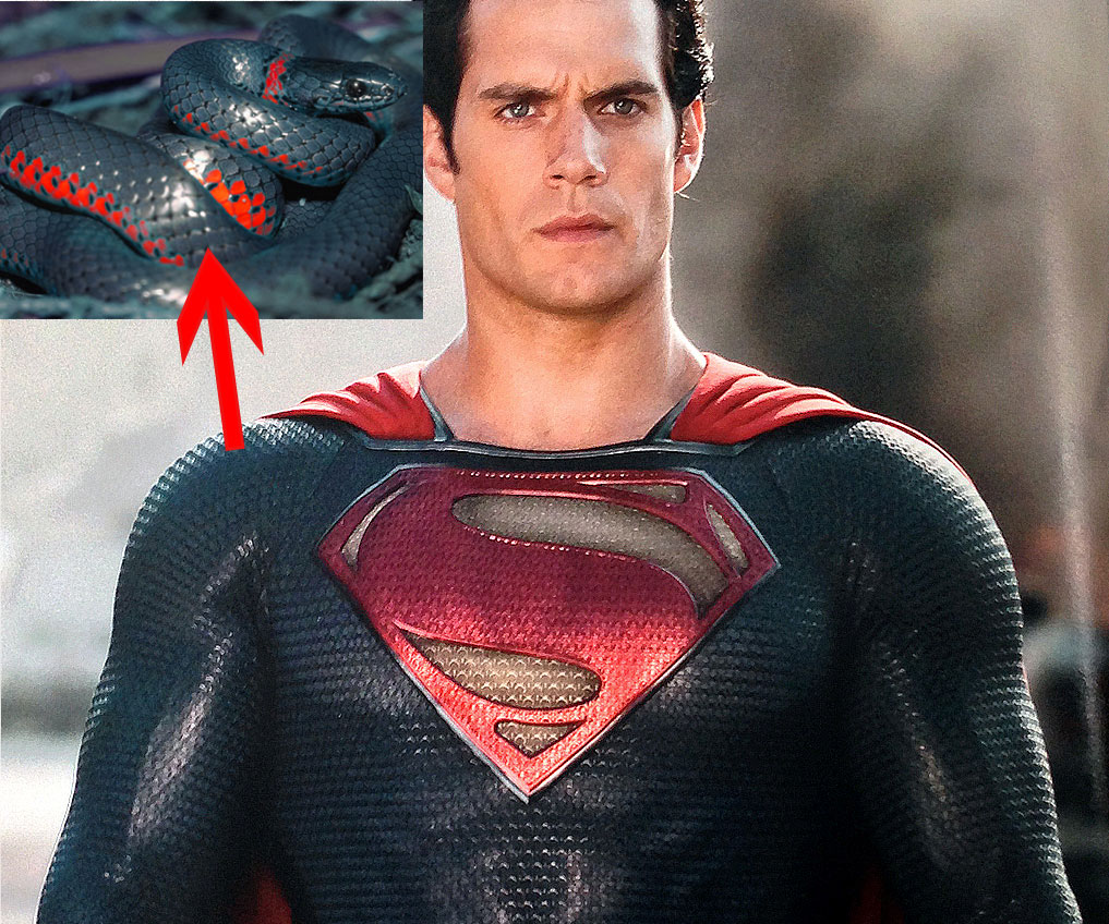 UFO's, Aliens, Angels & Demons - Page 2 Superman-snake-skin