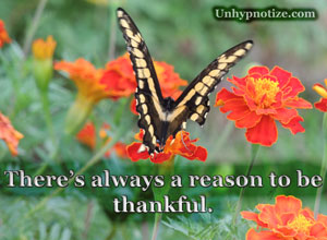 There is always a reason to be thankful. No matter the hand that life has dealt us, there are many things to be thankful for. This butterfly had a large chunk of its wing ripped off, probably by a bird, yet it continued to fly beautifully as if nothing was wrong with it.