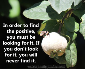 In order to find the positive you must be looking for it. If you don't look for it, you will never find it. You can't expect the positive to show itself on its own; it's up to you to find it.